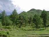 高原の真上が天狗山です